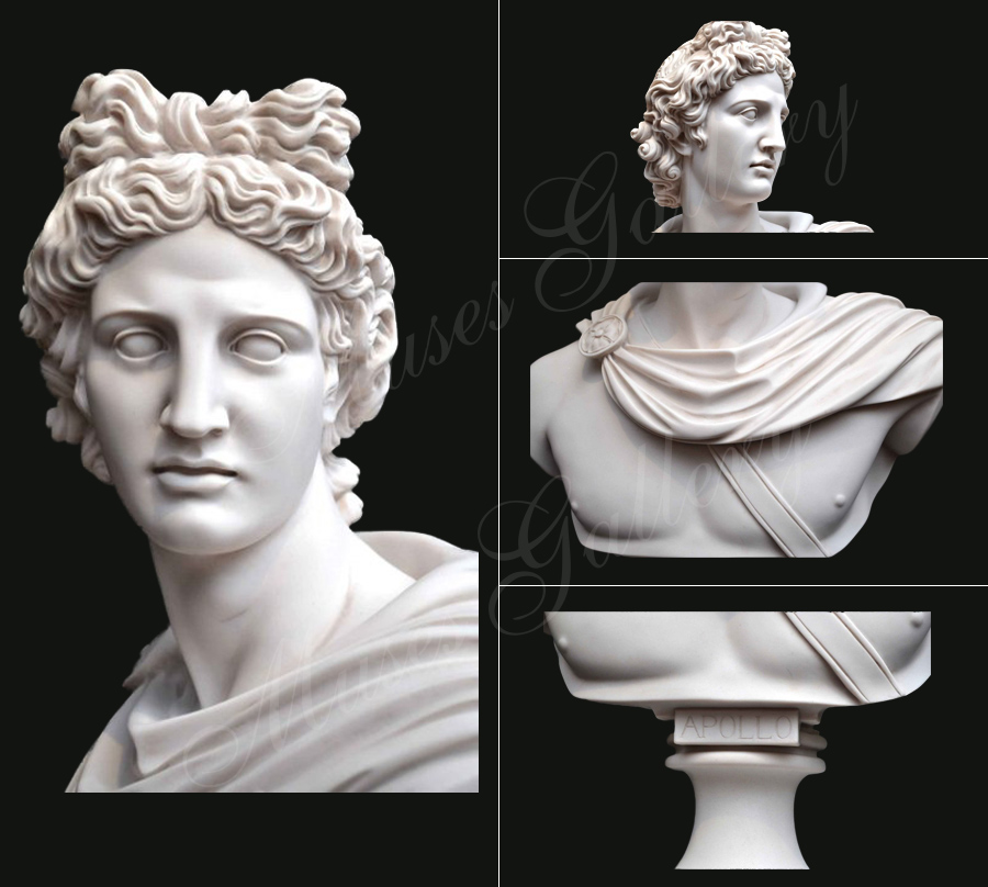 Famous Greek Marble Apollo Belvedere Bust Replica for Home Decor for Sale