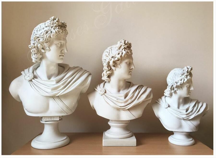 different size of Apollo Belvedere Bust for sale